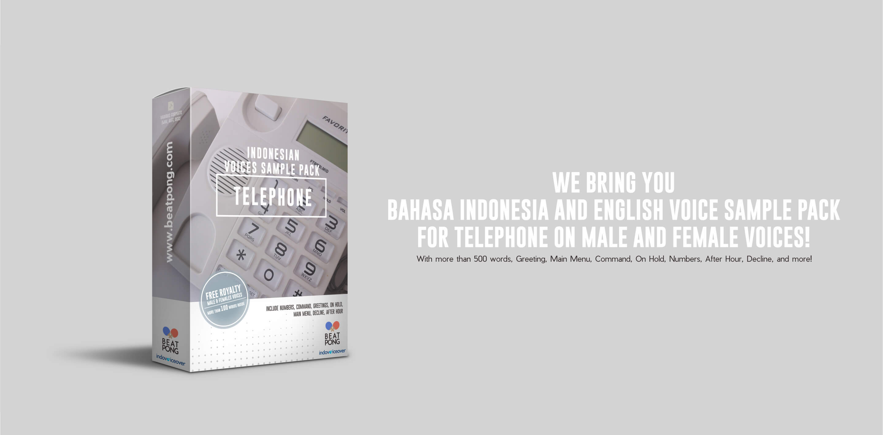 Voice over indonesia indonesia voice over marketplace abednego m4hsunfo